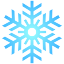 sneginka2